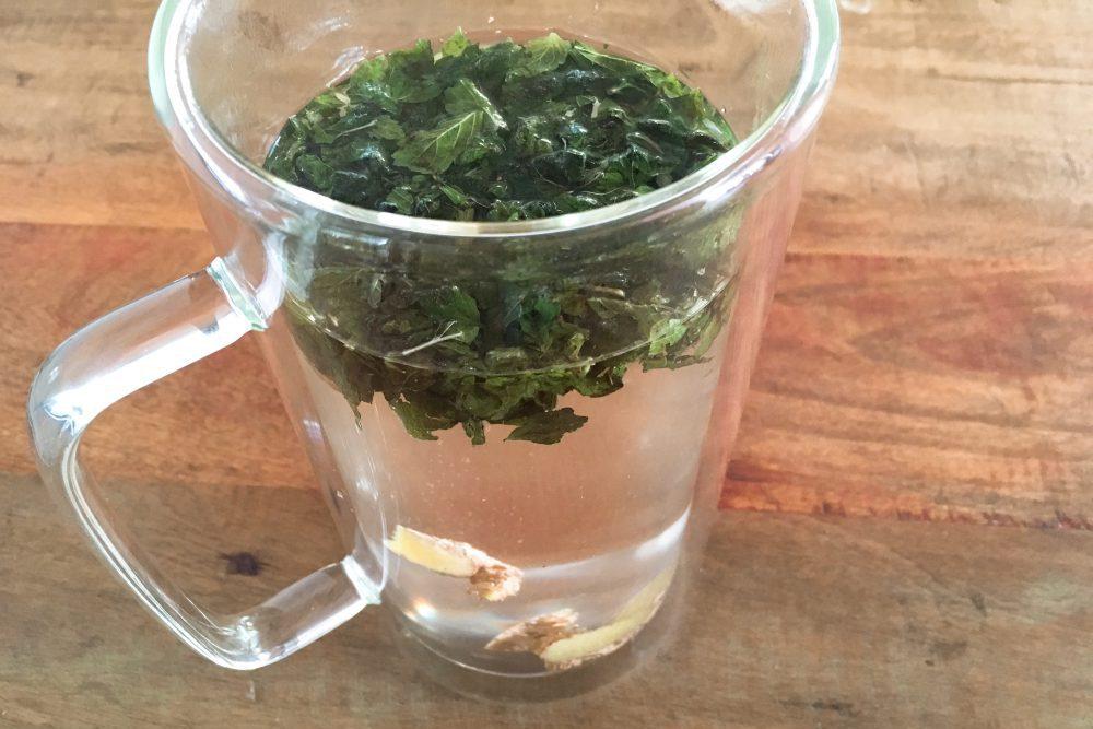Brennessel Tee ist zuckersenkend